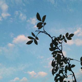 兰亭集序•王羲之