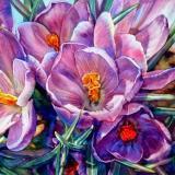 小紫Alicia🍒小紫美语