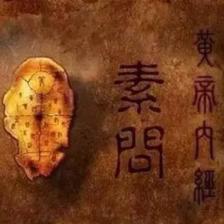 黄帝内经与养生智慧第172讲:中医学习与传统文化