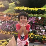 赵丽杰Lily