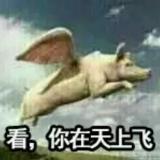朱文斌≡(▔﹏▔)≡