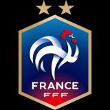 法国FFF朗观团队
