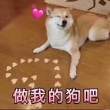 汐小沫&若熙Frederica