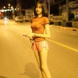 傣ลาว挝ไทย泰乐