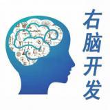 记忆力导师
