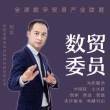 数字贸易委员~刘平
