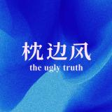 枕边风 theuglytruth