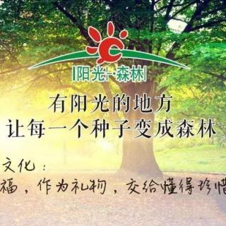 身体清洁的智慧1~~阳光森林排毒规划