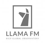 羊驼电台 LLAMA FM