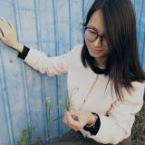 redredrose