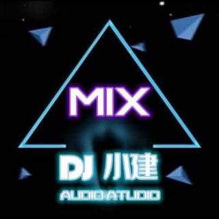 南腔北调金典歌曲 - dj小建Remix