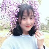 南飞燕_gxy